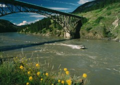 Trips start at the Chilcotin Bridge also known as the Sheep Creek Bridge.